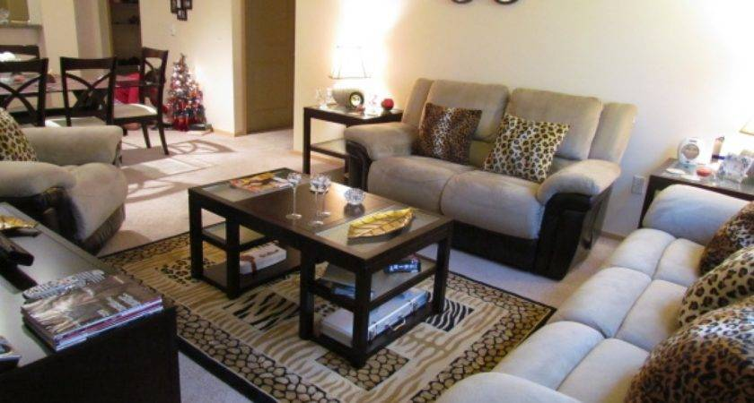 Animal Print Living Room Decor