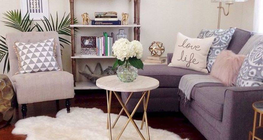 Best Apartment Living Rooms Ideas Pinterest Small