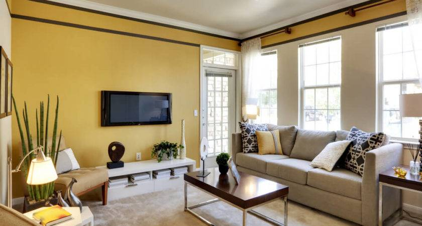 Best Living Room Colors Love Home Designs