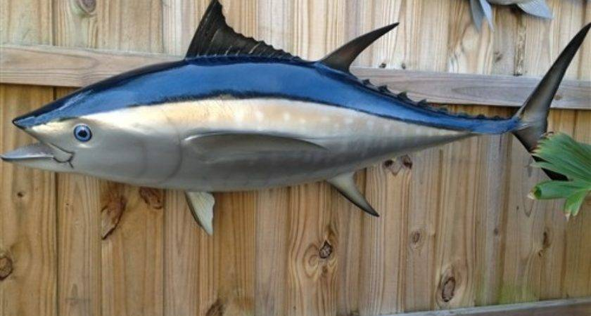Bluefin Tuna Fish Mount Two Sided Wall Replica