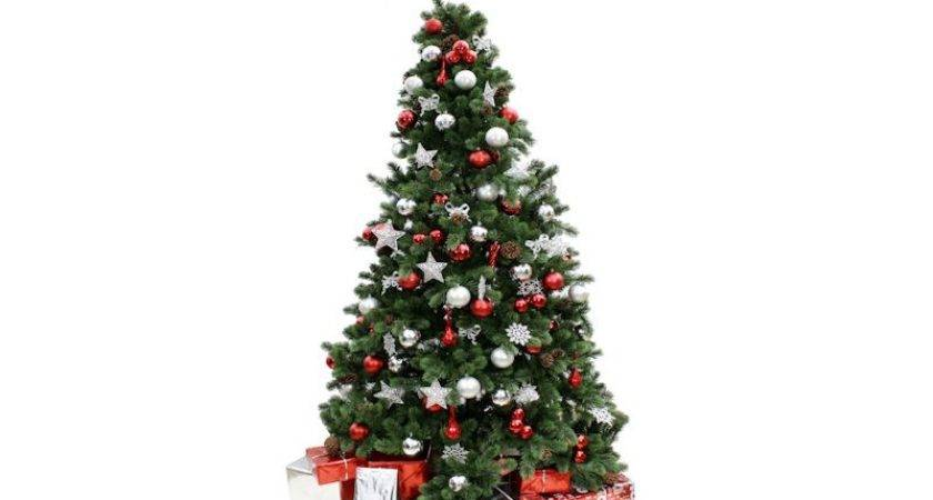 Christmas Tree Hire Covering London