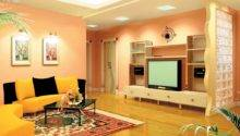 Color Living Room Walls Combination Home