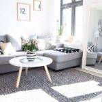 Color Rug Goes Grey Couch Buethe