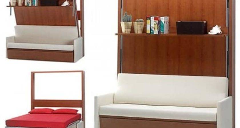 Cool Murphy Beds Decorating Smaller Rooms