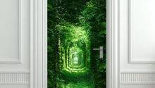 Cool Wall Door Stickers Murals Decoholic