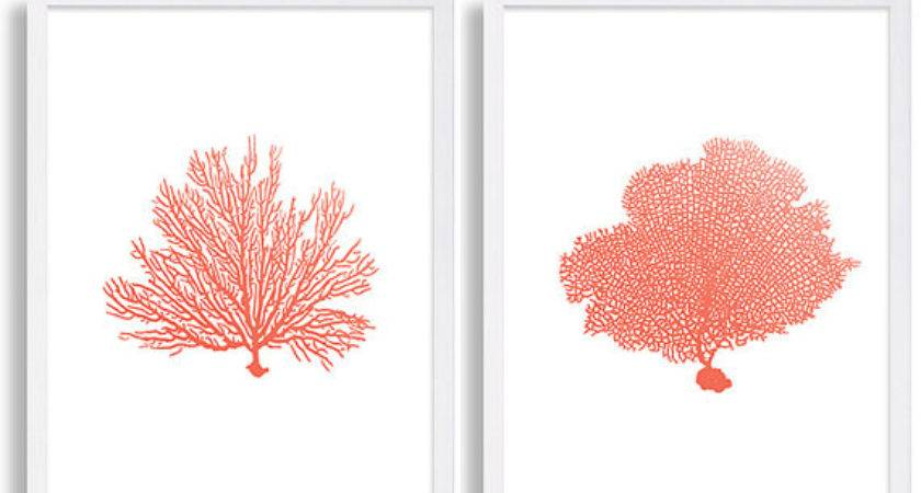 Coral Wall Art Prints Color Decor Water