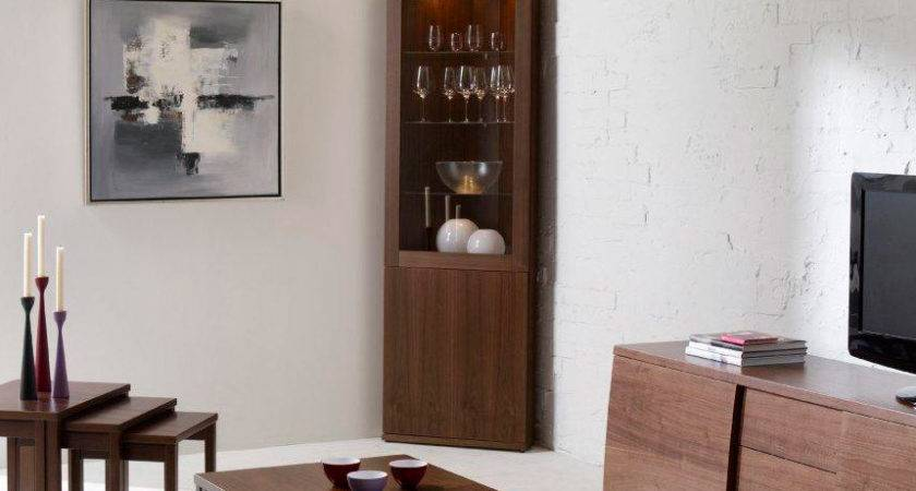 Corner Wall Cabinets Living Room Peenmedia