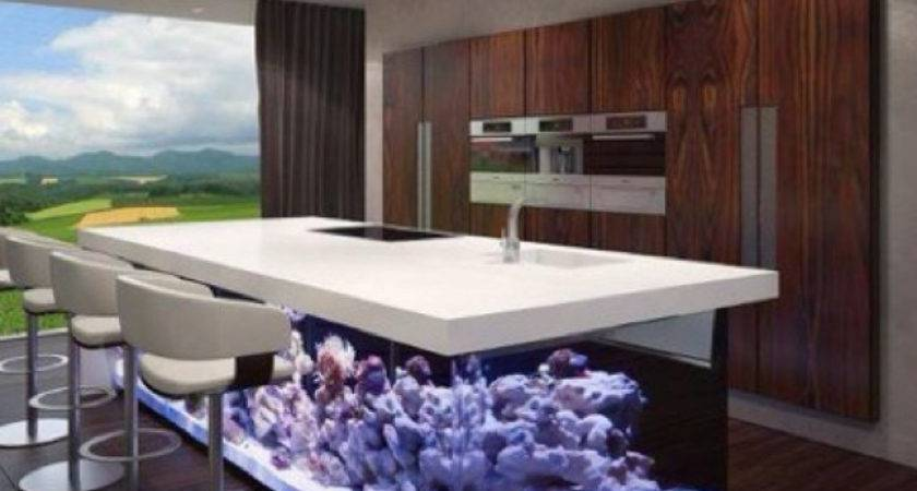 Creative Fish Tank Kitchen Concerning Remodel Small