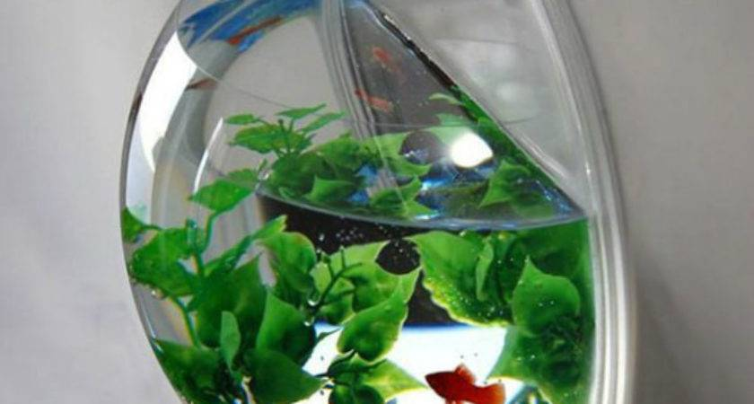 Creative Unusual Fish Tank Aquariums Spicytec