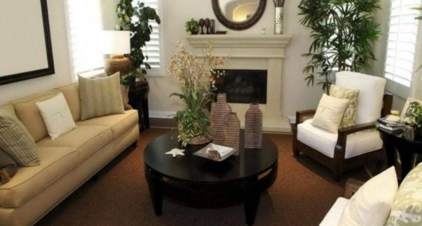 Delightful Living Room Ideas Pinterest Small Spaces