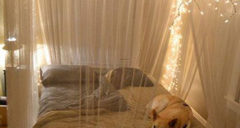 Diy Dorm Canopy Beds Decorazilla Design Blog