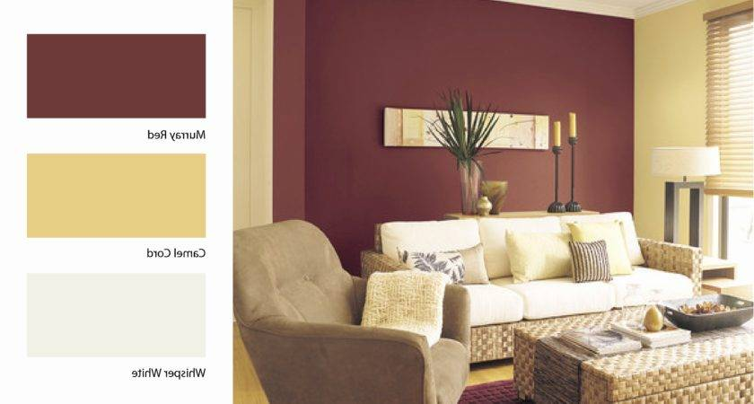 Dulux Living Room Colour Schemes Peenmedia