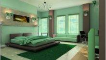 Enchanting Decorating Green Accents Best Idea