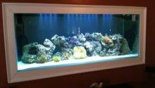 Fish Tank Built Into Wall
