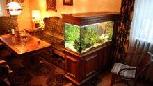 Fish Tank Room Maintenance