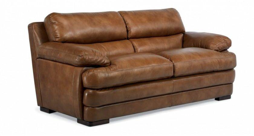 Flexsteel Living Room Leather Two Cushion Sofa Without