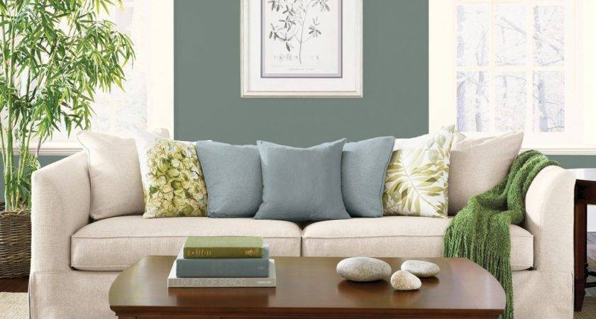 Green Living Room Ideas Winning Lime Sofa Houzz Sage