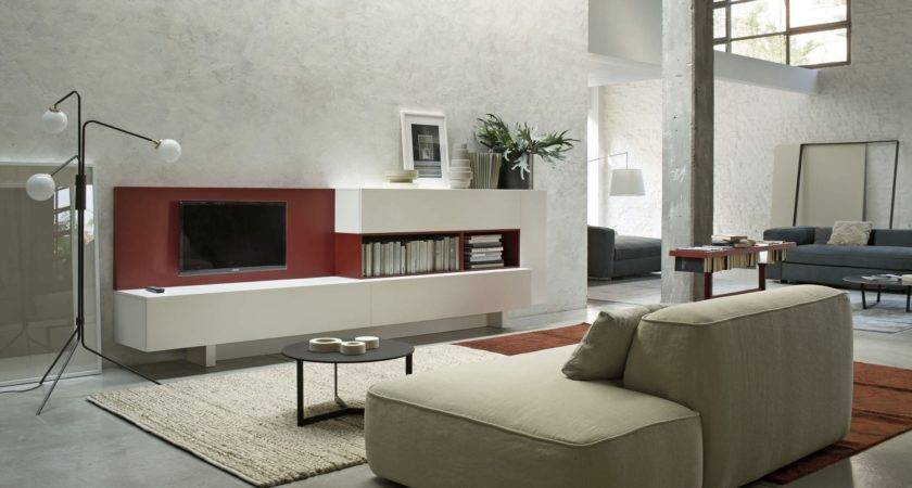 Home Design Surprising Living Room Storage Furnitures