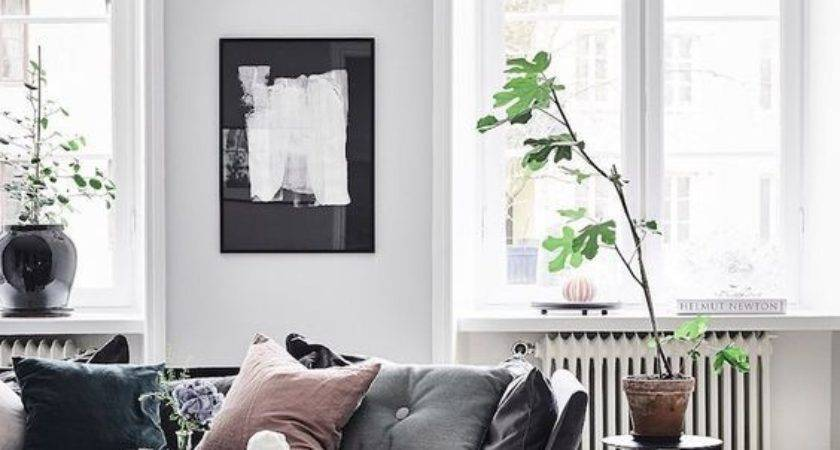 Improving Looks Your Living Room Using Suede