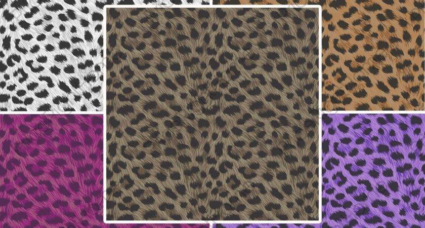 Leopard Print Animal Feature Wall
