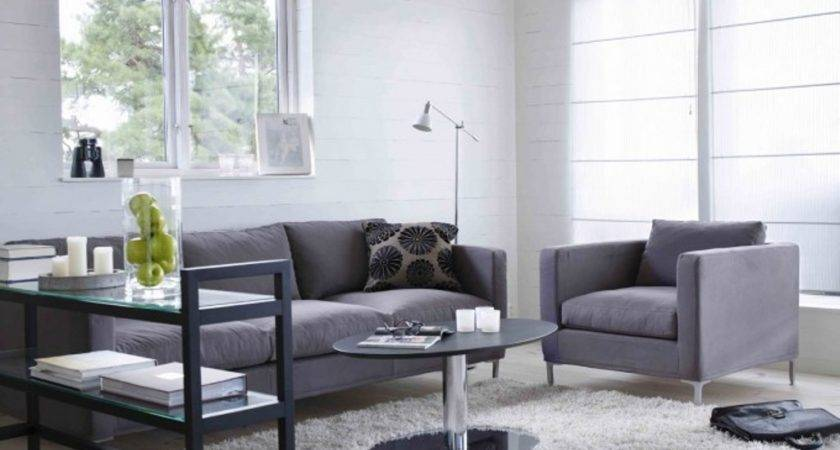 Living Room Amazing Grey Couch Decorating
