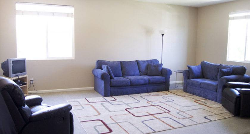 Living Room Area Rugs Home Trendy