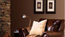 Living Room Brown Color Schemes Rooms