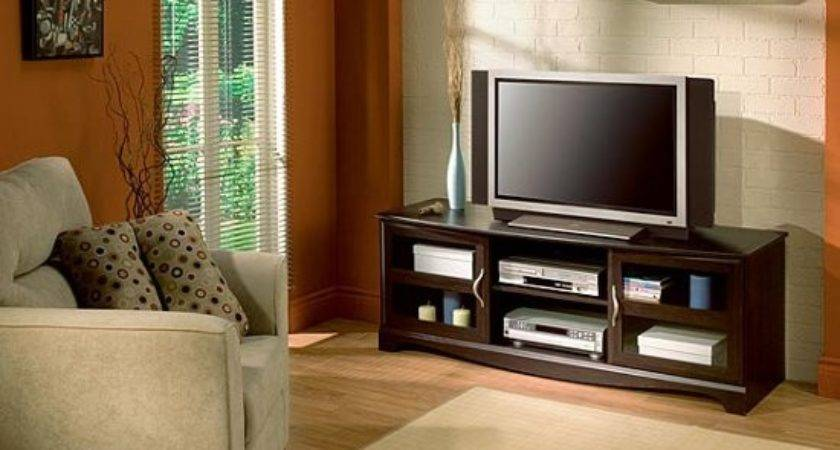 Living Room Ideas Stand