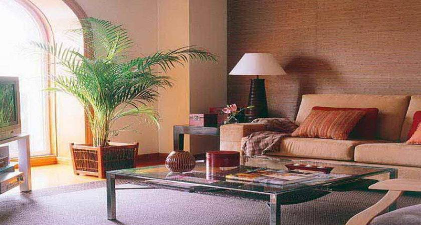 Living Room Tips Choosing Best Colors Small