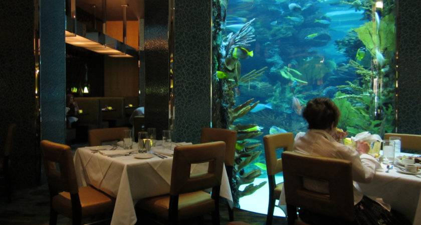 Looking Aquarium Dining Table Chart House