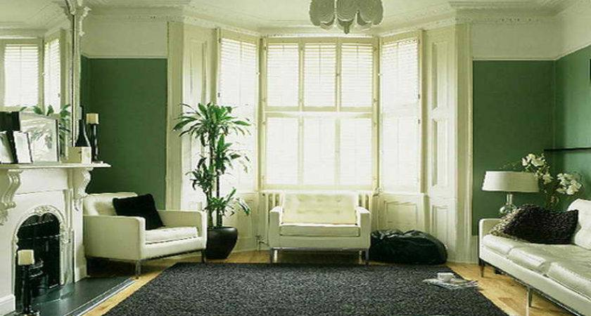 Miscellaneous Green Living Room Interior Decoration