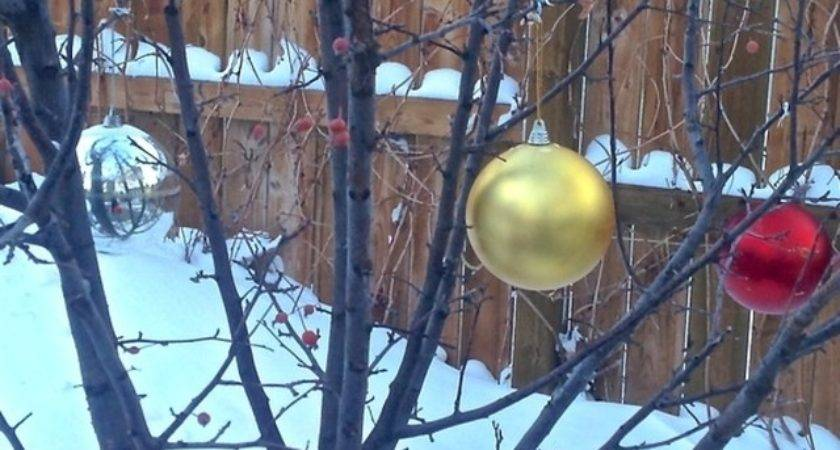 Outside Tree Christmas Decorations Speedy Holiday