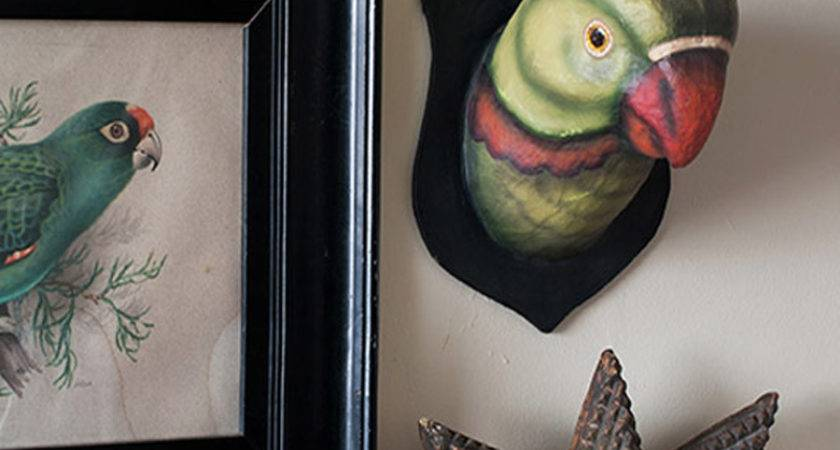 Quirky Home Decor Inspired Birds