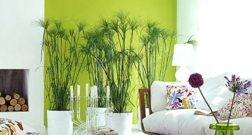 Reasons Decorate Your Home Bold Colors Pics