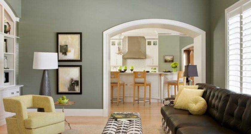 Sage Green Paint Living Room Design Ideas