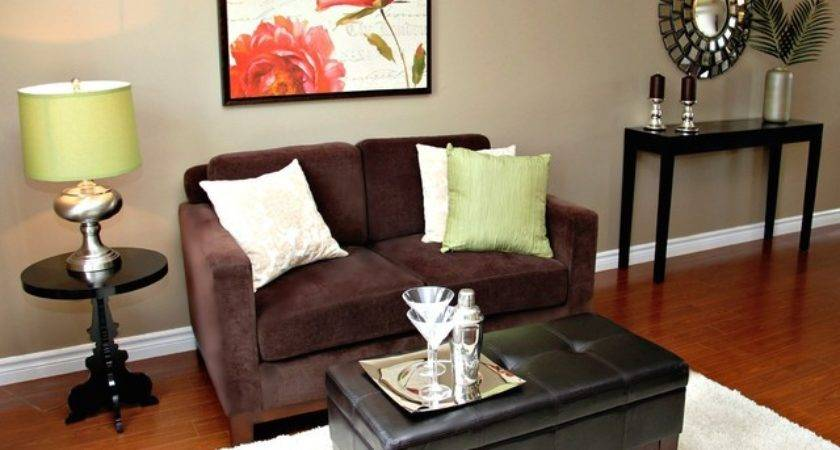 Small Living Room Staging Traditional