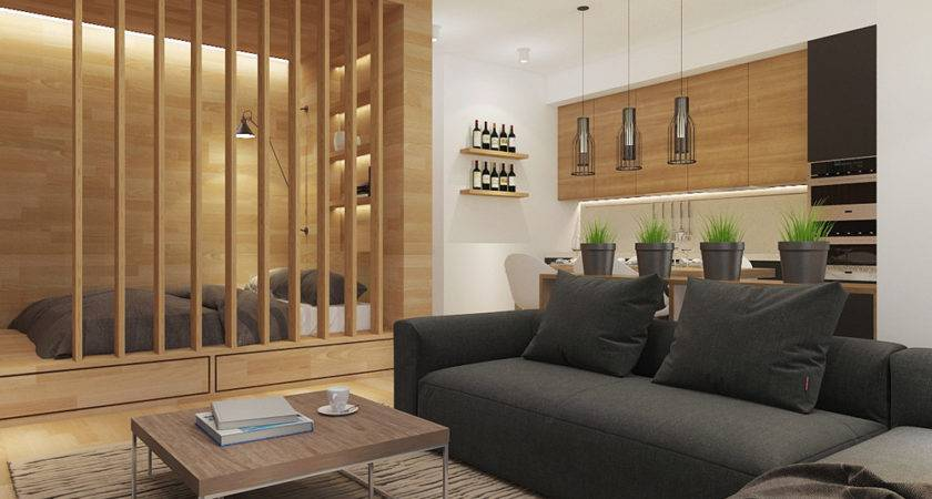 Studio Apartment Design Creative Perfect Layout
