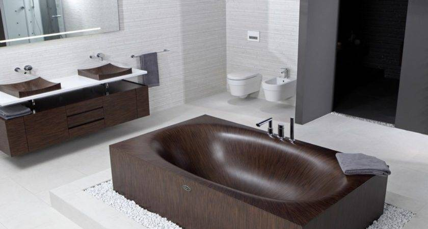 Unique Unusual Bathtubs Bathroom Design