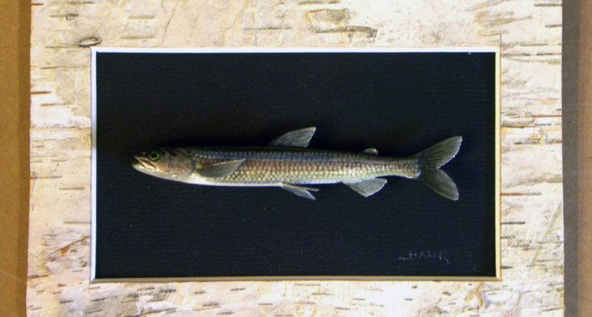 Wall Mount Fish Carvings