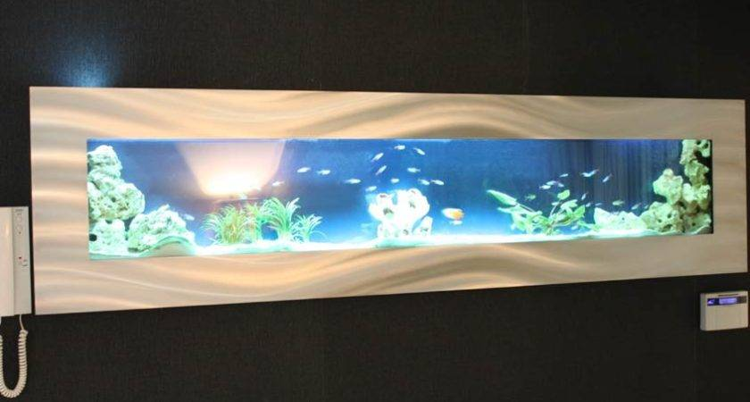 Wall Mounted Fish Tanks Tank Animal