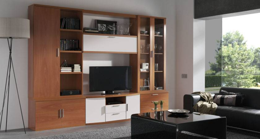 Wall Units Glamorous Decorating Living Room