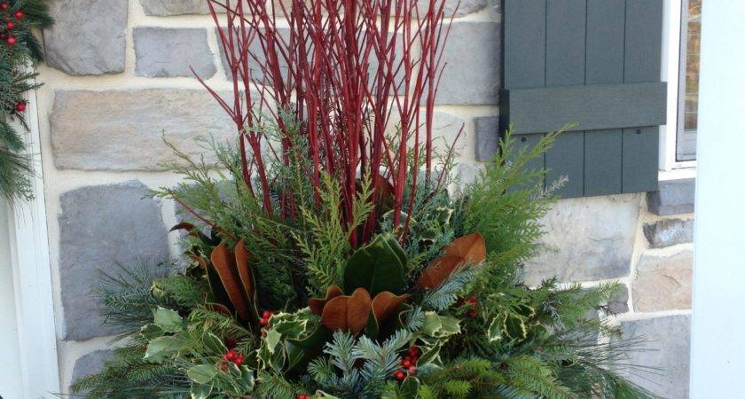 Winter Christmas Container Garden Red Pot Twig