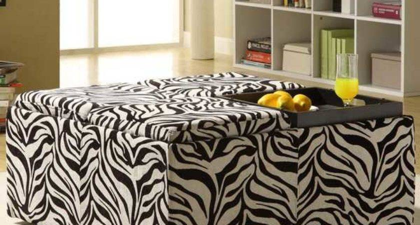 Zebra Print Living Room Decor Modern House